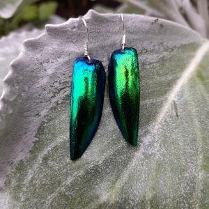 Single Beetle Wing Drop Earrings